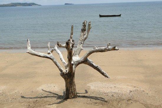 Anjiamarango Beach Resort: plage de l'hôtel
