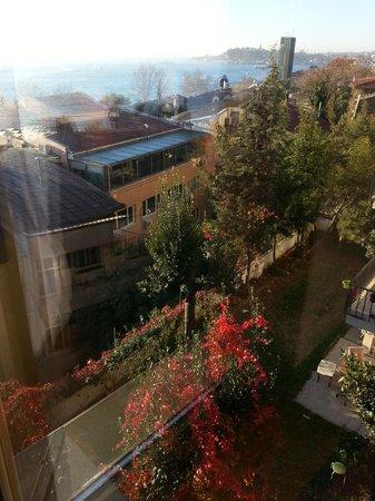 Deris Bosphorus Lodge: down from Kitchen