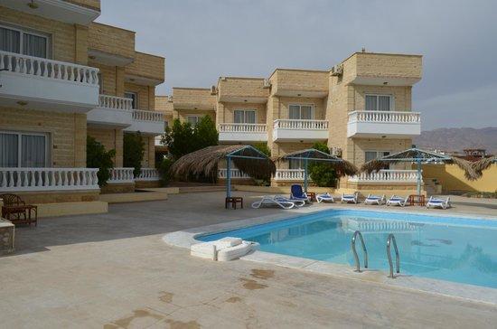 Dahab Hotel: Бассеин