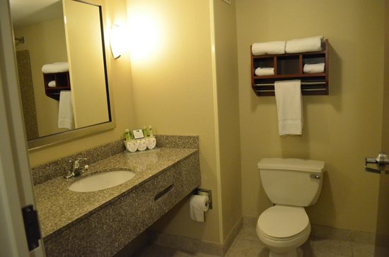 Holiday Inn Express & Suites Niagara Falls : Санузел
