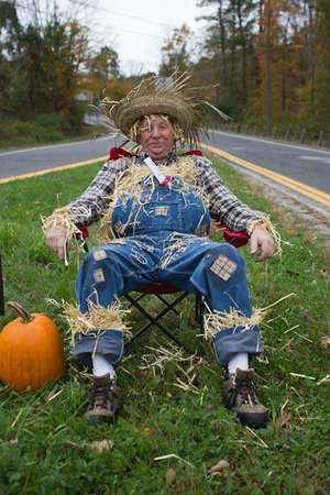 Angevine Farm: Our scarecrow