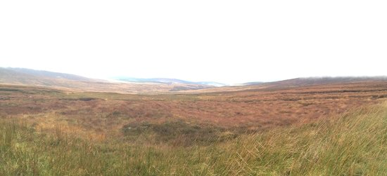 Walkabout Wicklow: Wicklow Mountains
