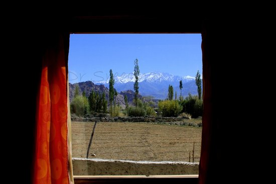 Ladakh Sarai: View from our cottage.