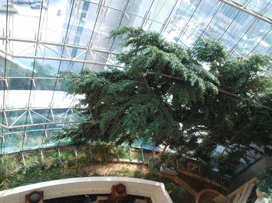Hilton Beirut Metropolitan Palace: Lobby