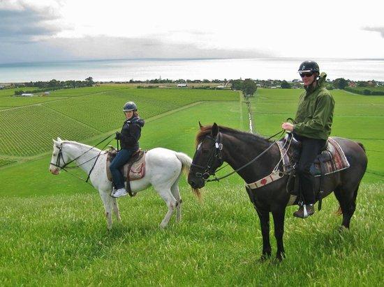 Hawkes Bay Farmyard Zoo : Horse trek