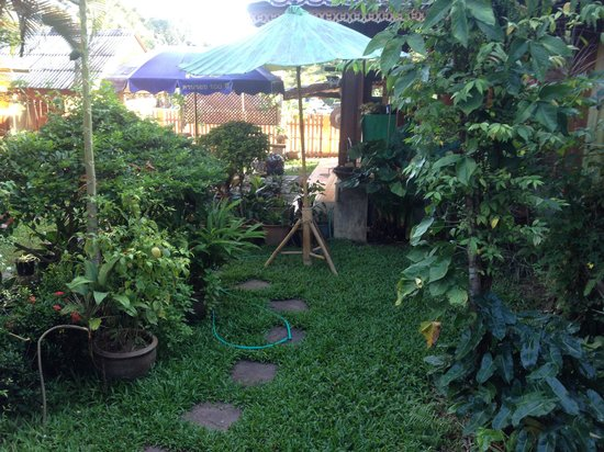 Ying's guesthouse: Garden