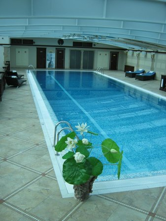 Taleon Imperial Hotel : Бассейн