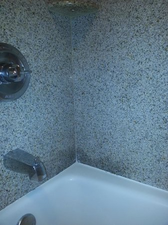 La Quinta Inn & Suites Columbus - Grove City: Odd stain or discoloration in the tub/shower back-splash
