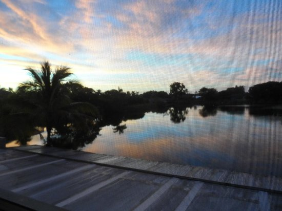 Marco Island Lakeside Inn: Sunrise from our balcony taken through the screen