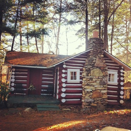 The Pines Cottages : Lovely Log Cabin
