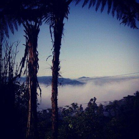 Urcu de Mindo Cloud Forest Eco-Lodge: Atardecer en el restaurant mirador del lodge