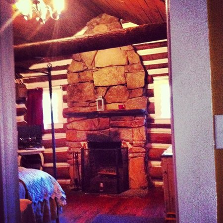 The Pines Cottages: Log burning fireplace