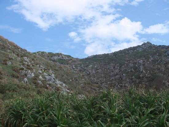 Tonaki-jima Island: 島尻毛