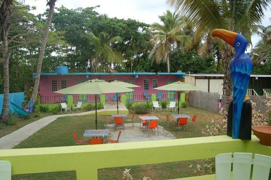 Amapola Inn: More Backyard