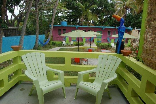 Amapola Inn: Back Yard
