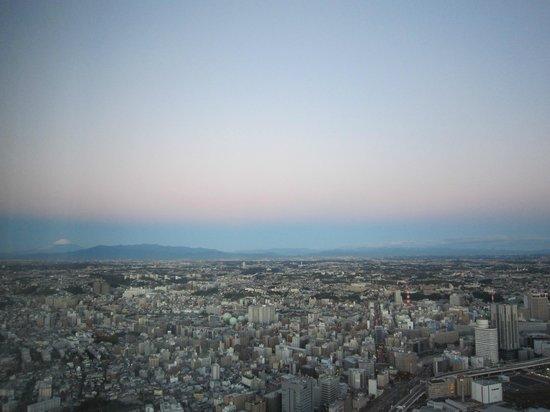 Yokohama Royal Park Hotel : 遠くに富士山が見えます
