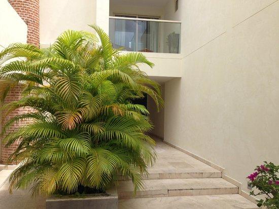 San Diego 974 Suites: Planta baja y pasillos.