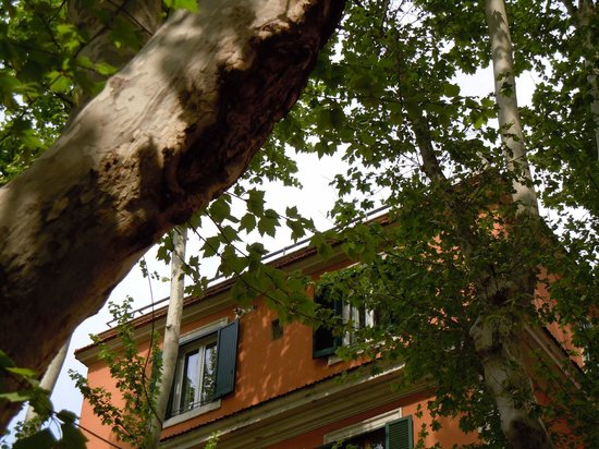 The house on the trees picture of la casa sugli alberi - Casa sugli alberi ...