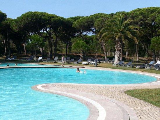 Sheraton Cascais Resort : La preciosa zona de la piscina!