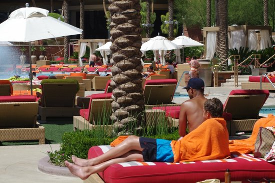 Red Rock Casino Resort & Spa : nice area but a little smelly........in fact very smelly