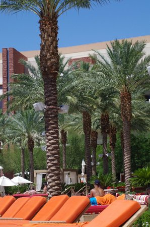 Red Rock Casino Resort & Spa : again all nice apart from the smell