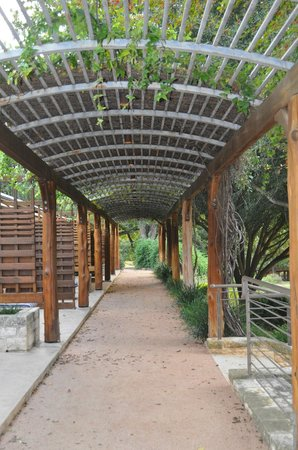 Lake Austin Spa Resort: Walkway in front of cottages/rooms