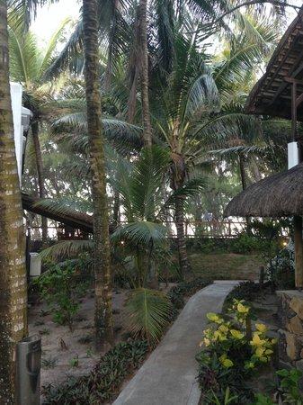 Emeraude Beach Attitude: Garden