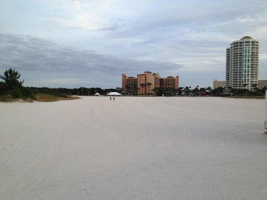 Sheraton Sand Key Resort: Sheraton Sand Key