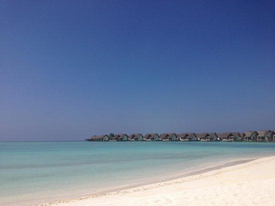 Four Seasons Resort Maldives at Landaa Giraavaru : Beach