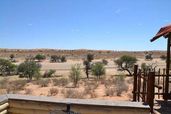 Kalahari Tented Camp: Aussicht auf das Flussbett