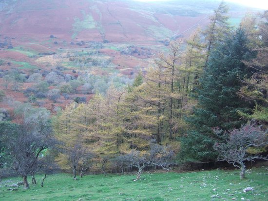 Aber Falls: Walking back to the car park in November