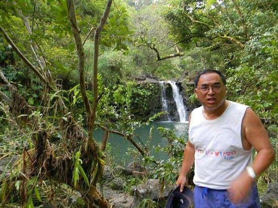 Puohokamoa Falls: View of falls from trailhead