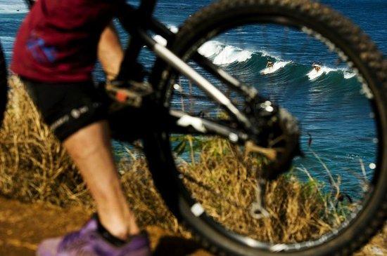 Krank Cycles : Maui single track