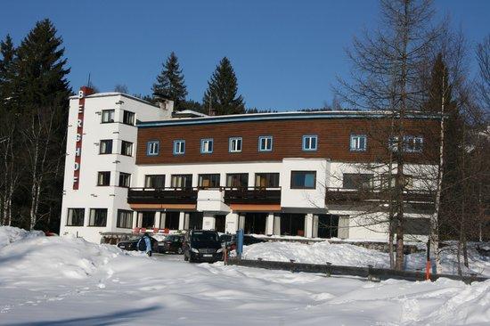Hotel Berghof: Het hotel