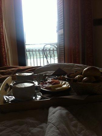 Hotel Castel Gandolfo : Colazione a letto con vista sul lago