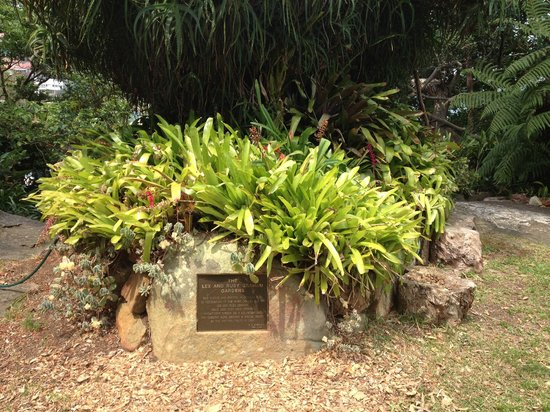 Cremorne Point to Mosman Bay Walk: beautiful garden created by a generous couple