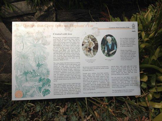 Cremorne Point to Mosman Bay Walk: some info