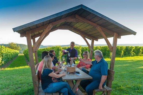 Weinstube Amalienhof: Weinhütten