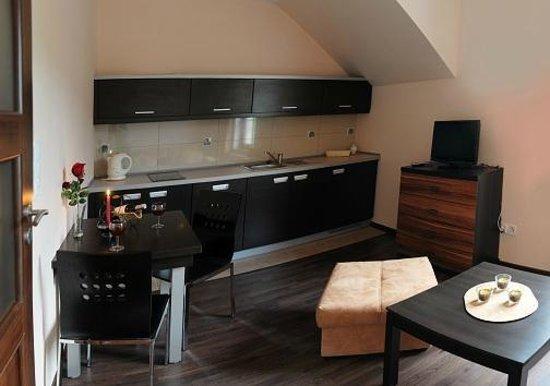 Apartamenty Karkonosz: Apartament Wang