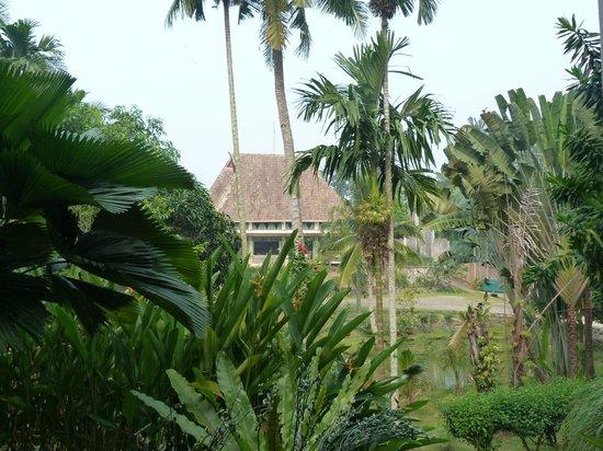 Hotel Deli River: Uitziht van uit kamer naar het restaurant
