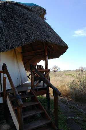 Manyara Wildlife Safari Camp : One of the rooms