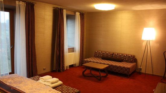 Hotel Rajska Zahrada: Superior class room