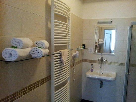 Hotel Peregrin: Aseo y ducha