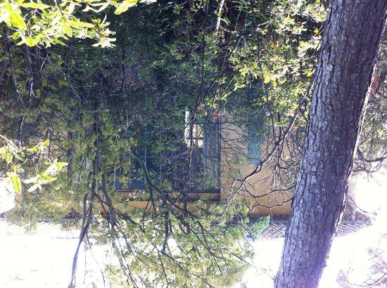 Atelier Cezanne: Atelier window with garden view