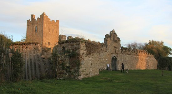 Shannonbridge, Ireland: Clonony Castle