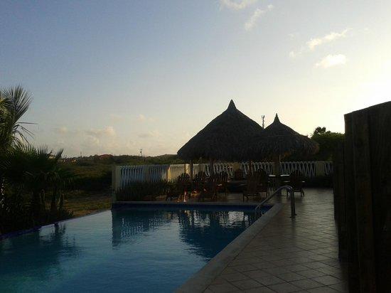 Aruba Cunucu Residence : la pisicne au crépuscule