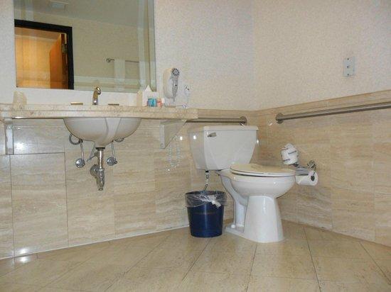 Banheiro adaptado p cadeirantes; barras de segurança, pia sem coluna, toalhe -> Pia Para Banheiro Adaptado