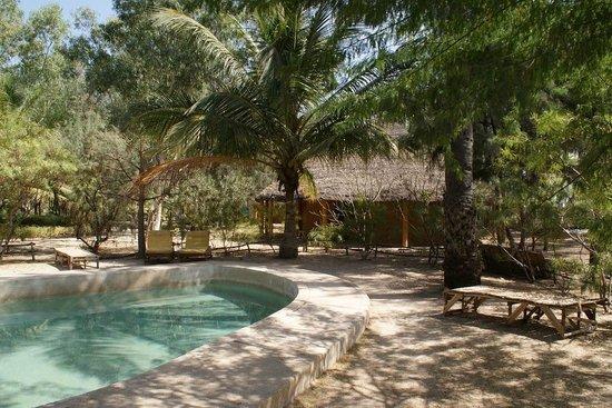 Djidjack : La piscine et une case