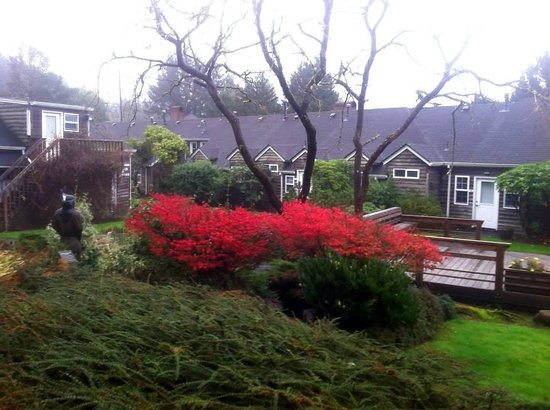 Ecola Creek Lodge: The courtyard and Koi pond