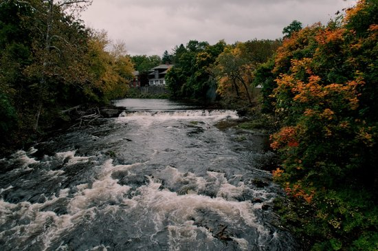 Best Western Plus The Inn & Suites At The Falls: Fall Colors